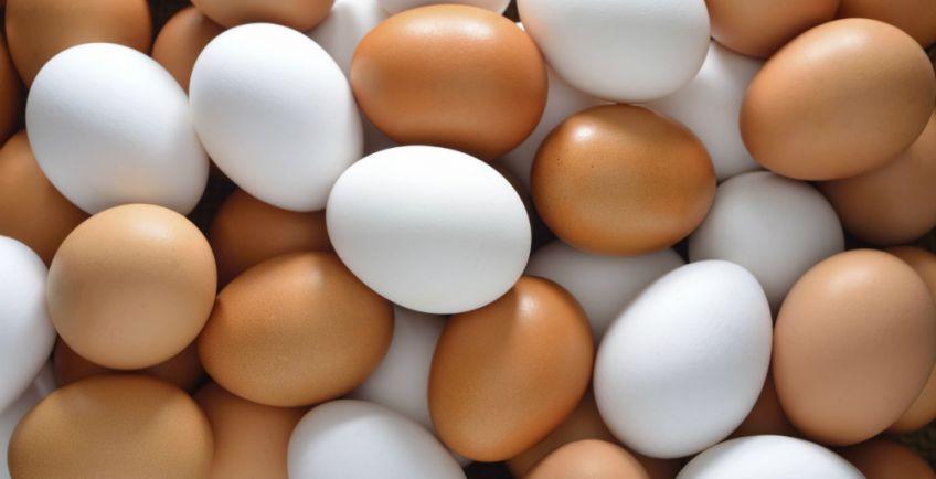 huevos blancos o morenos