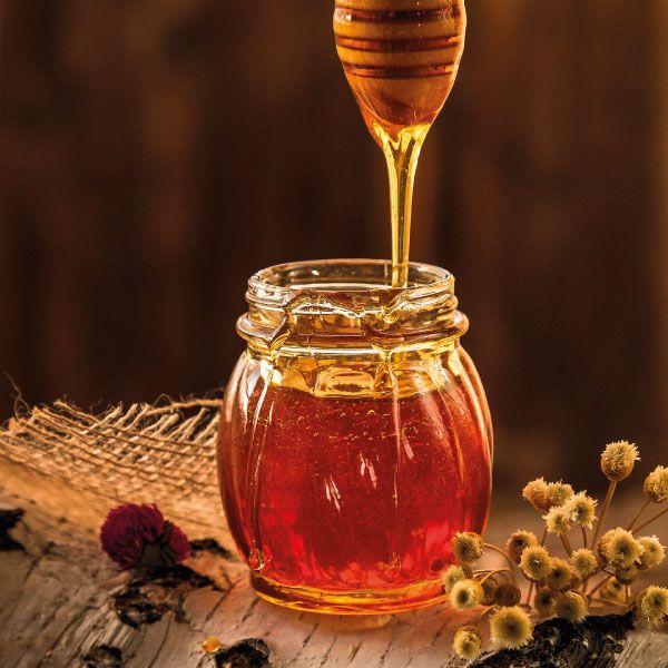 Miel pura de abeja Pollo a la Miel por Navidad ¡Genial!