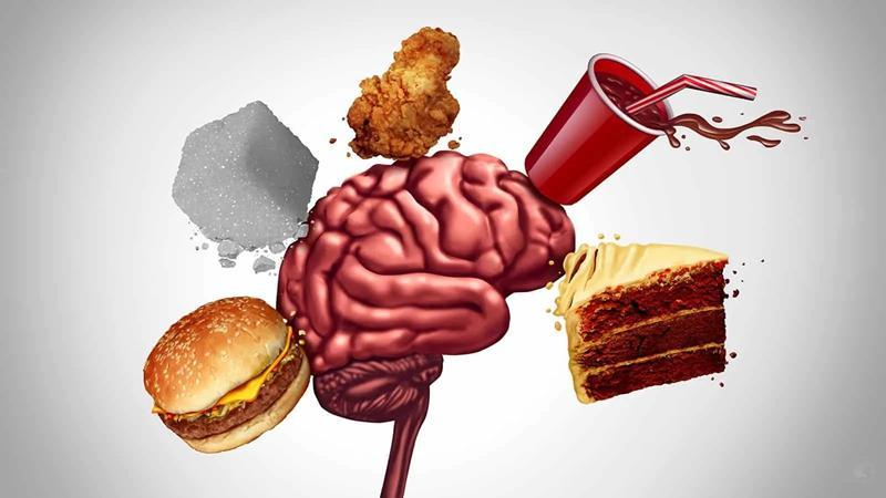 Efectos de la comida basura en el cerebro Fast food ¡la vía rápida para la enfermedad!