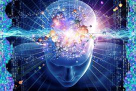 Vitamina B12 y D para la mente sana