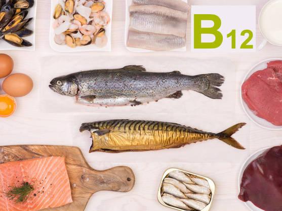 Fuente vitamina B12