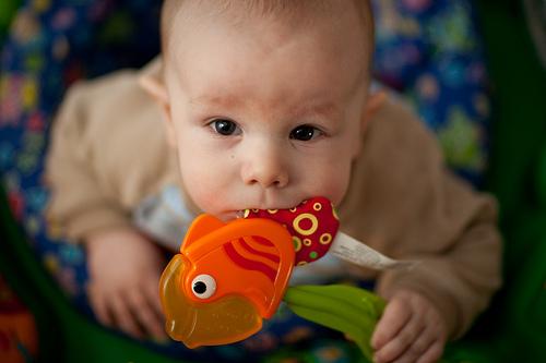 bebés y pescado