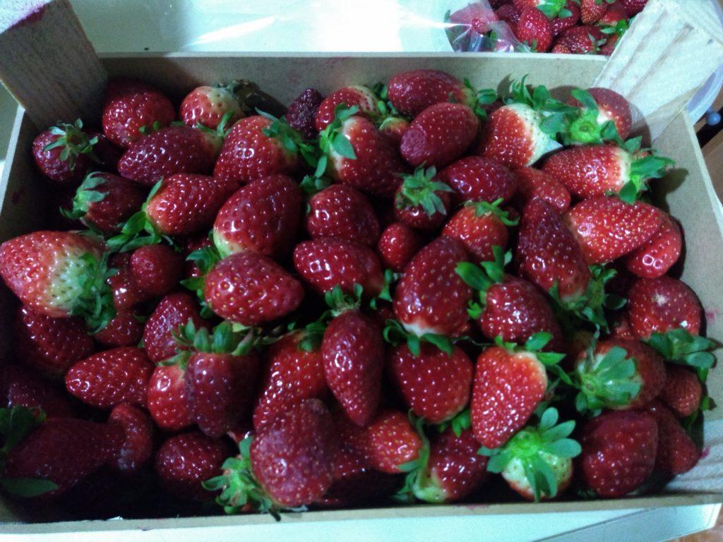 mermelada de fresa sin azúcar casera