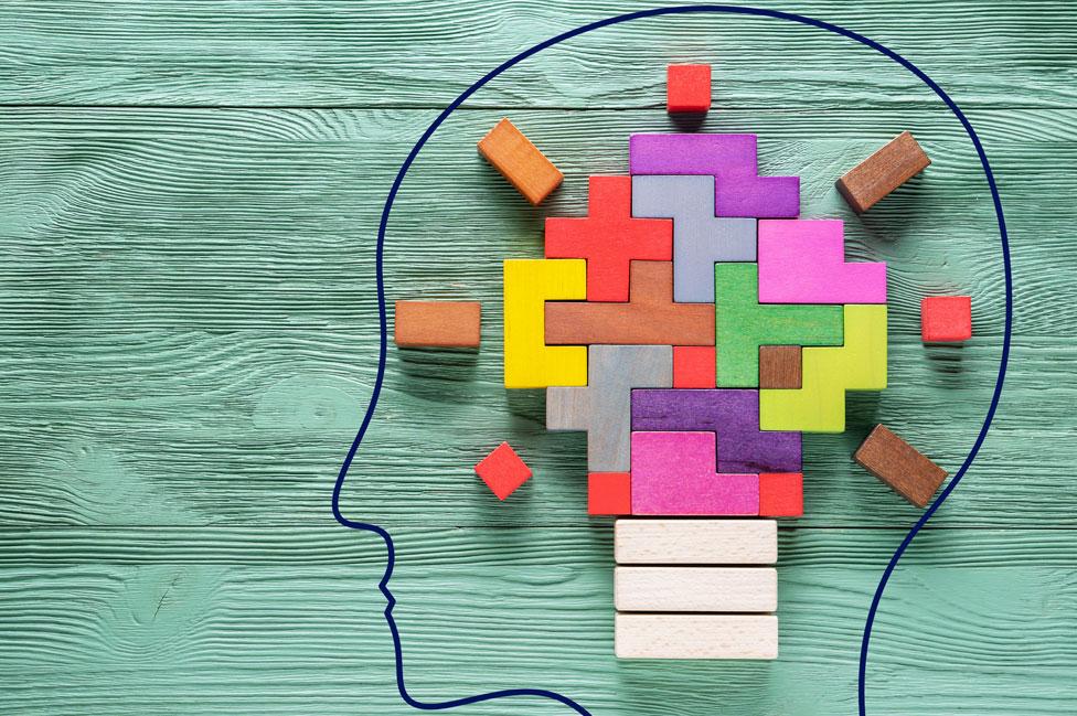 Elementos necesarios para el cerebro